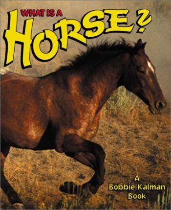 What Is a Horse? als Buch (gebunden)