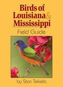 Birds of Louisiana & Mississippi Field Guide