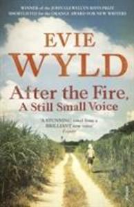 After the Fire, A Still Small Voice als Taschenbuch