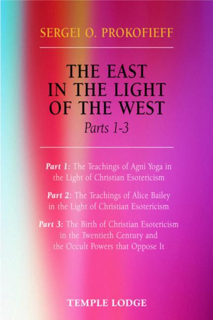 The East in the Light of the West als Taschenbuch