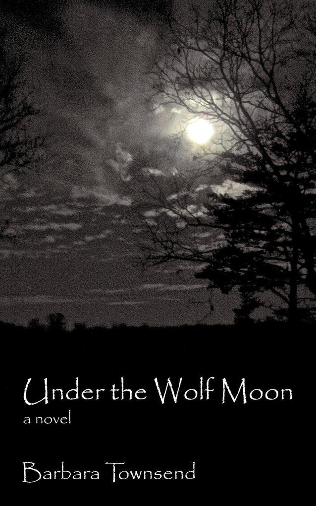 Under the Wolf Moon als Taschenbuch