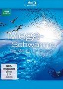 Megaschwärme - Die Macht der Masse