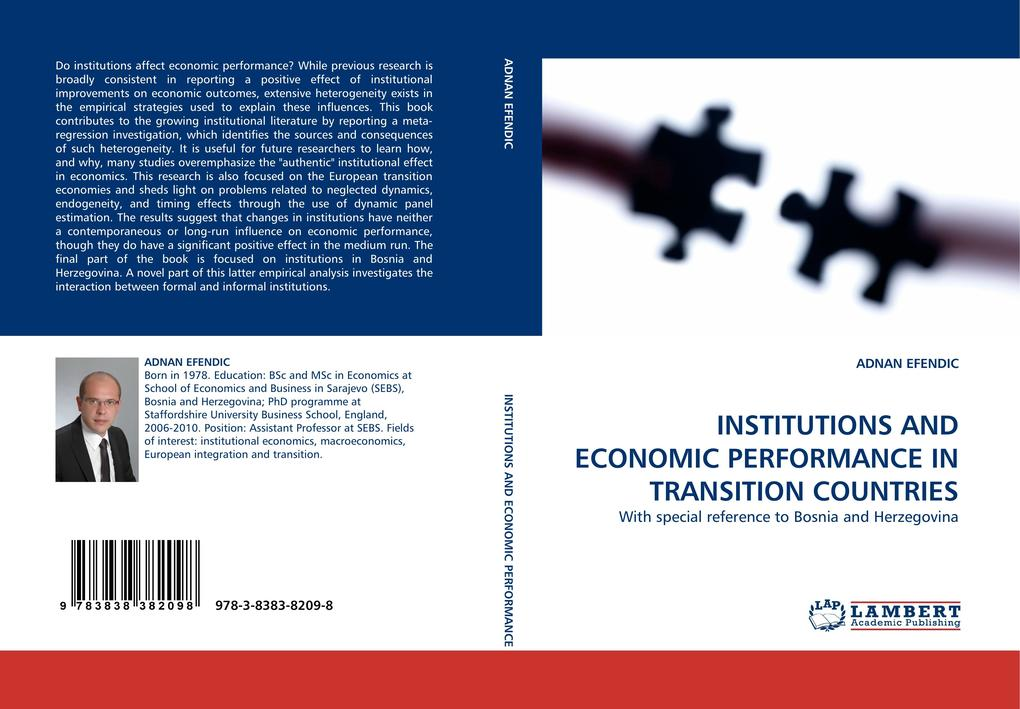 INSTITUTIONS AND ECONOMIC PERFORMANCE IN TRANSITION COUNTRIES als Buch (gebunden)