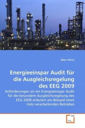 Energieeinspar Audit für die Ausgleichsregelung des EEG 2009 als Buch (kartoniert)