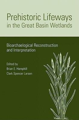 Prehistoric Lifeways in the Great Basin Wetlands: Bioarchaeologial Reconstruction and Interpretation als Taschenbuch