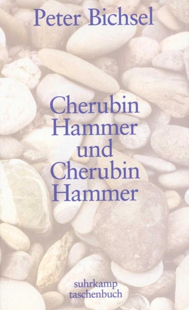 Cherubin Hammer und Cherubin Hammer als Taschenbuch