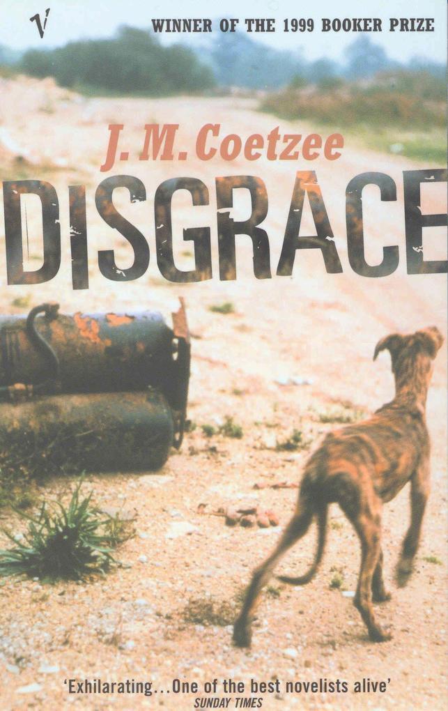 Disgrace als Taschenbuch