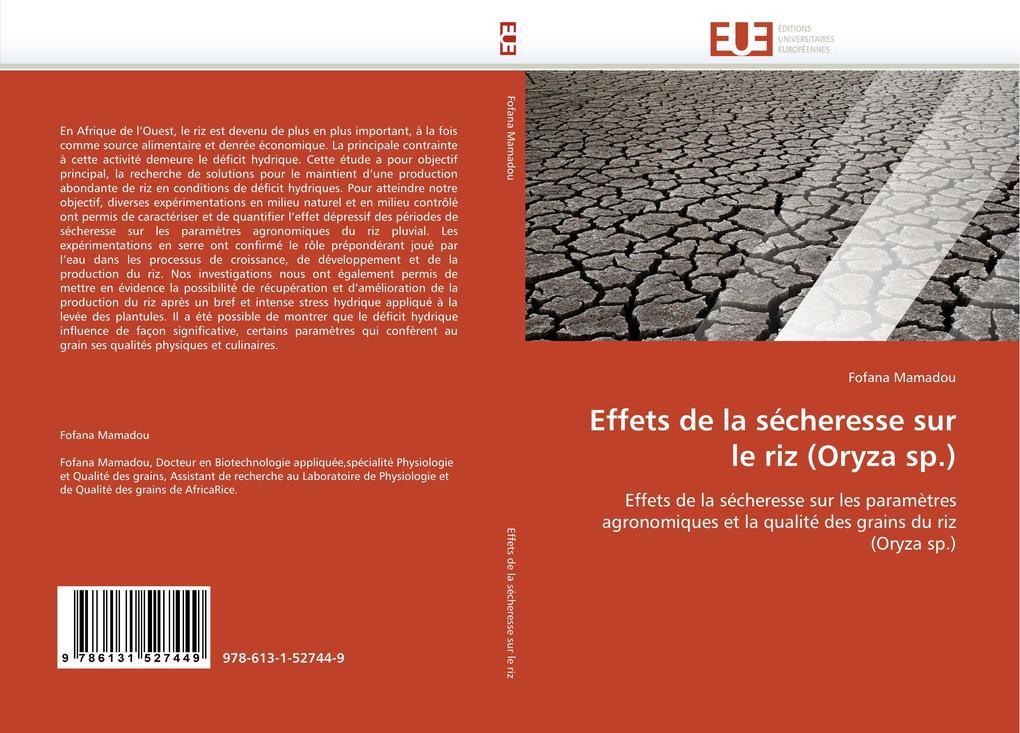 Effets de la sécheresse sur le riz (Oryza sp.) als Buch (gebunden)