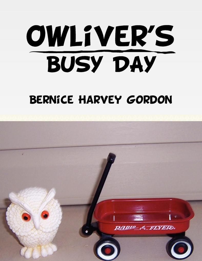 Owliver's Busy Day als Taschenbuch