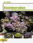 Ihr Hobby Steinkorallen im Meerwasseraquarium