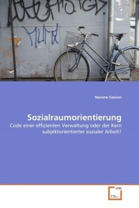 Sozialraumorientierung als Buch (gebunden)