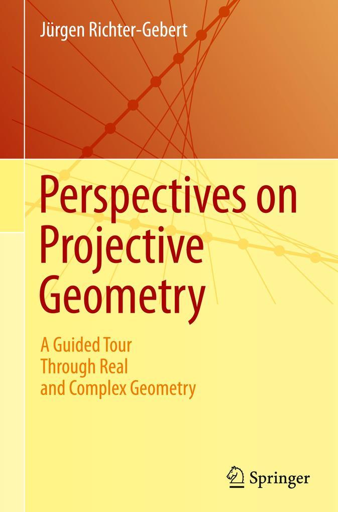 Perspectives on Projective Geometry als Buch (gebunden)