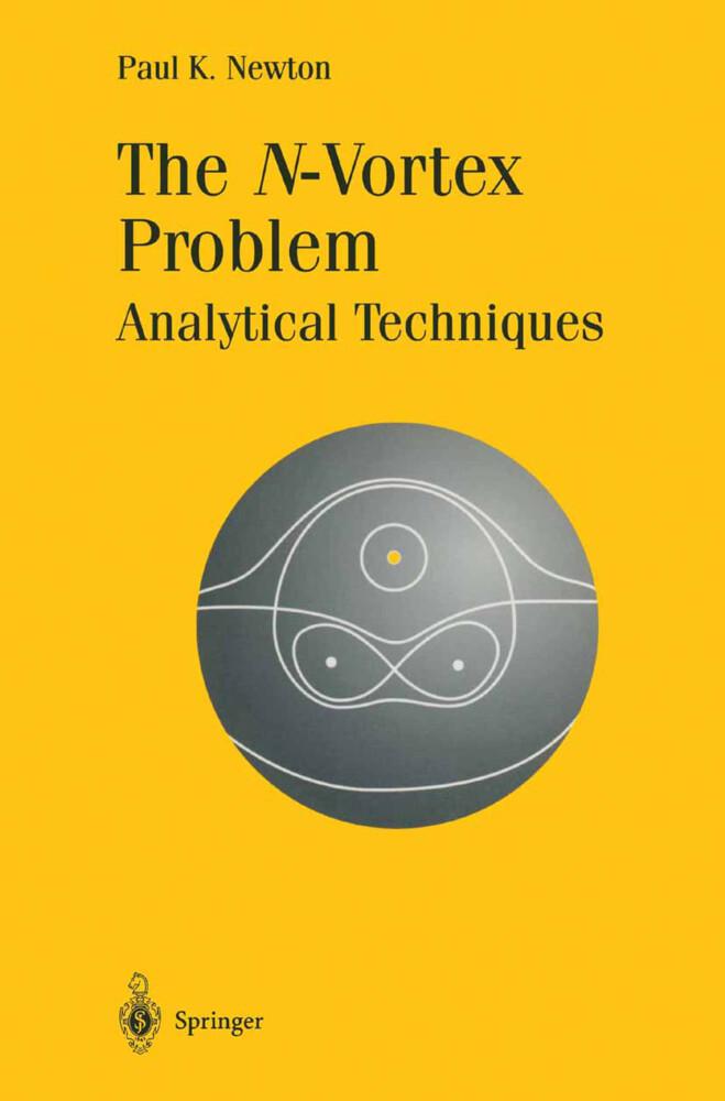 The N-Vortex Problem als Buch (kartoniert)