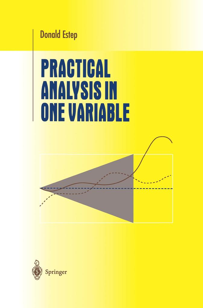 Practical Analysis in One Variable als Buch (kartoniert)
