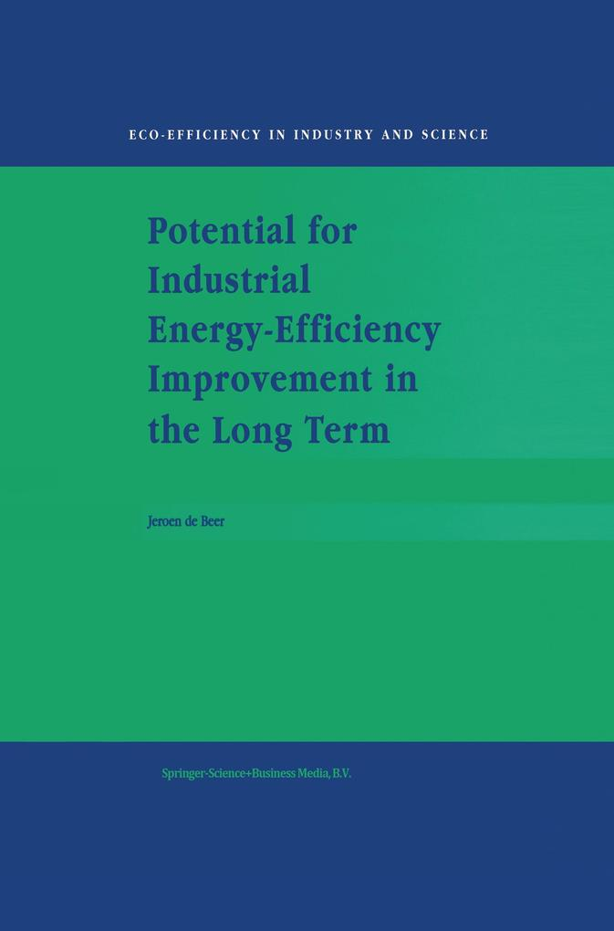 Potential for Industrial Energy-Efficiency Improvement in the Long Term als Buch (gebunden)