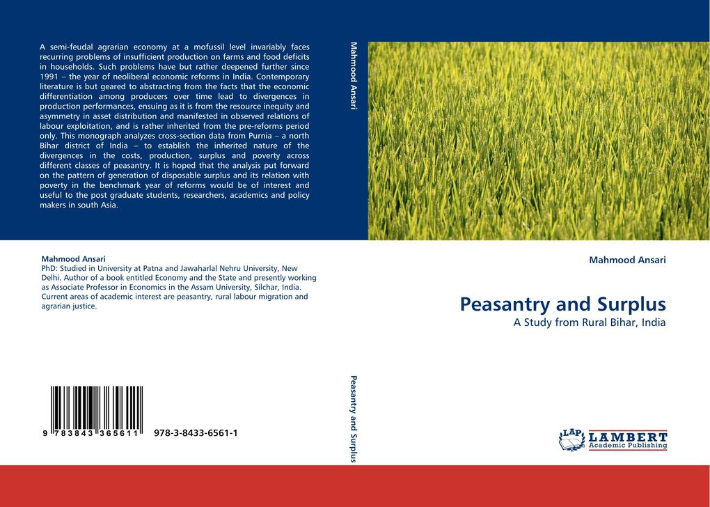 Peasantry and Surplus als Buch (gebunden)