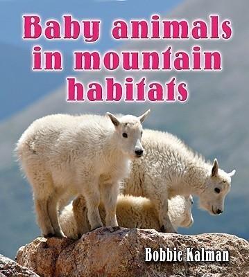 Baby Animals in Mountain Habitats als Buch (gebunden)