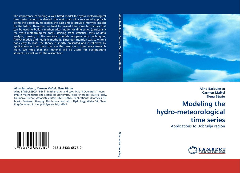 Modeling the hydro-meteorological time series als Buch (kartoniert)