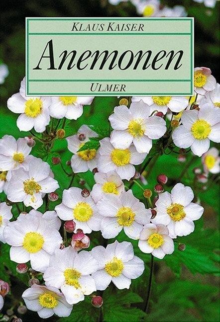 Anemonen als Buch (gebunden)