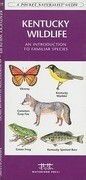 Kentucky Wildlife: A Folding Pocket Guide to Familiar Species