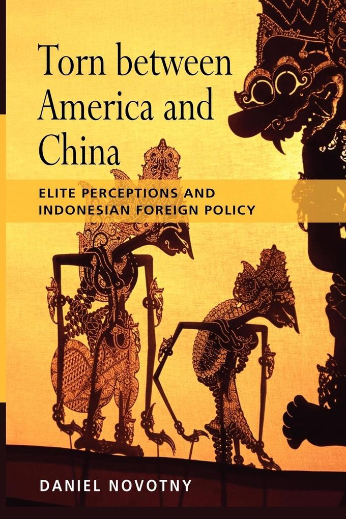 Torn Between America and China als Taschenbuch