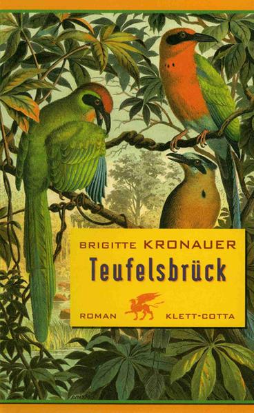 Teufelsbrück als Buch (gebunden)