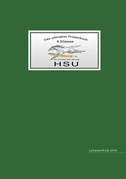 Das ultimative Probenbuch HSU 4. Klasse als Buch (kartoniert)