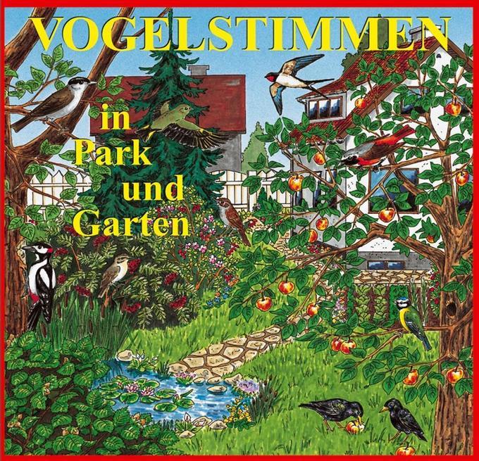 Vogelstimmen in Park und Garten,Ed.1 als Hörbuch CD