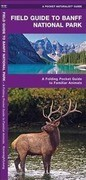 Banff National Park, Field Guide to: A Folding Pocket Guide to Familiar Species