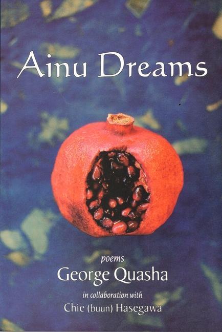 Ainu Dreams als Taschenbuch