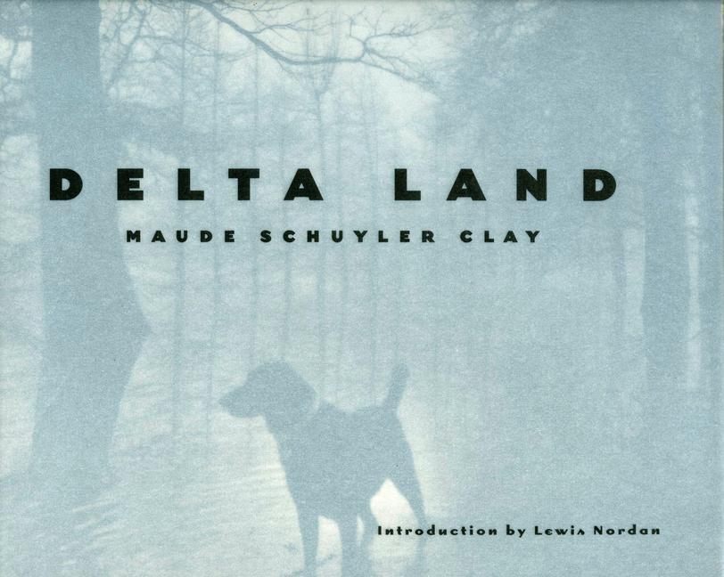 Delta Land als Buch (gebunden)