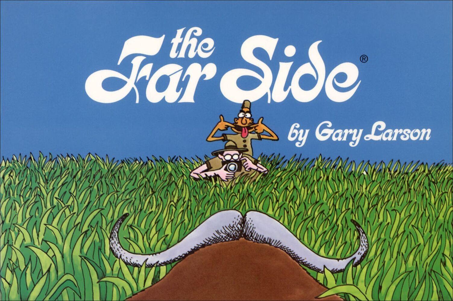 The Far Side als Taschenbuch