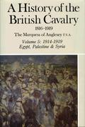 A History of the British Cavalry 1914-1919, Volume V