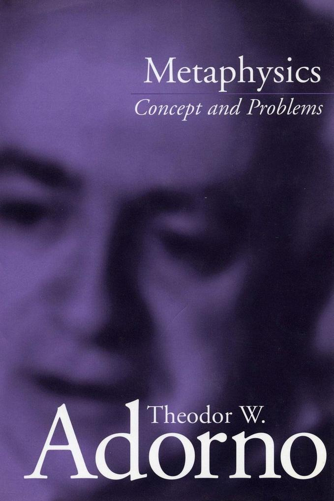 Metaphysics: Concept and Problems als Taschenbuch