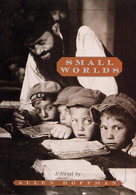 Small Worlds als Buch (gebunden)