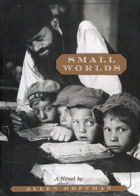 Small Worlds als Taschenbuch