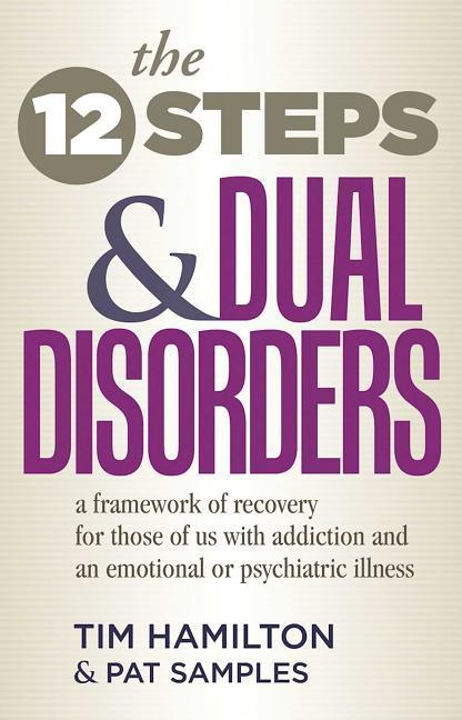 The Twelve Steps And Dual Disorders als Taschenbuch