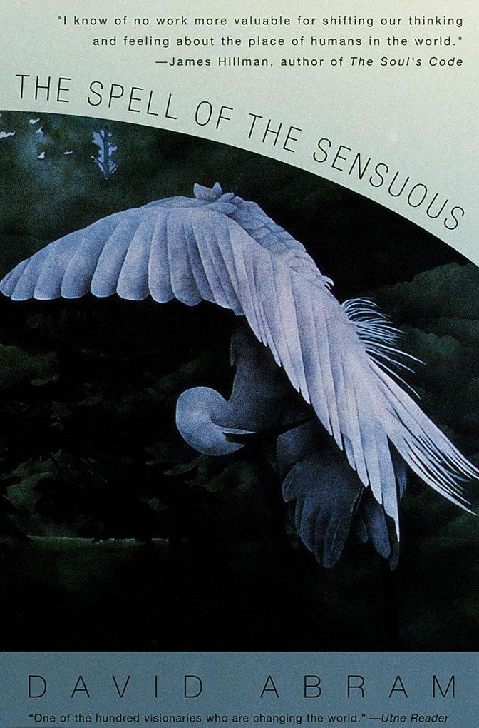 The Spell of the Sensuous als Buch (kartoniert)