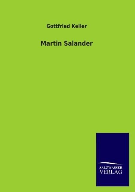 Martin Salander als Buch (kartoniert)