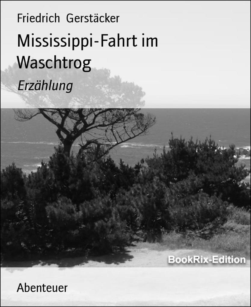 Mississippi-Fahrt im Waschtrog als eBook epub