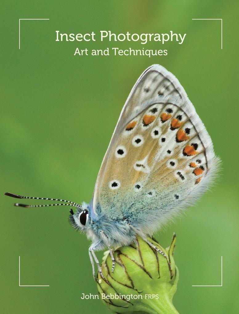 Insect Photography.pdf