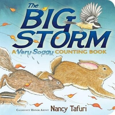 The Big Storm: A Very Soggy Counting Book.pdf