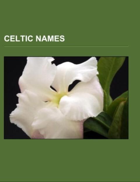 Celtic names.pdf