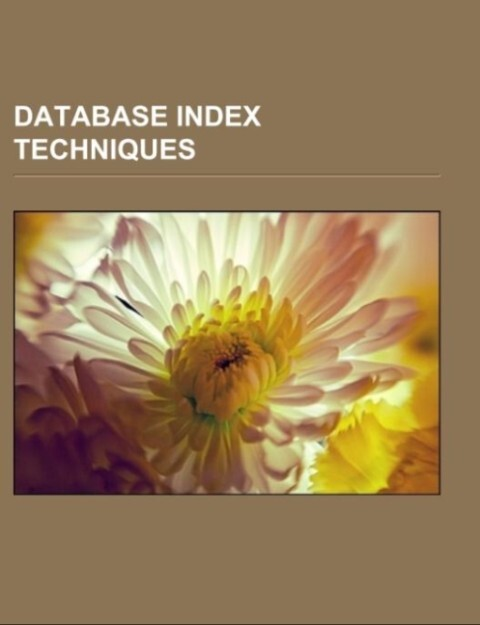 Database index techniques.pdf