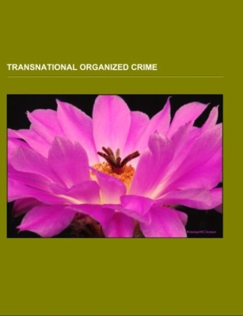 Transnational organized crime.pdf