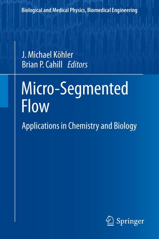 Micro-Segmented Flow.pdf