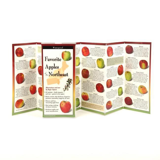 Favorite Apples of the Northeast.pdf