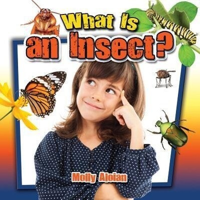 What is an insect?.pdf