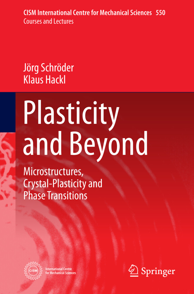 Plasticity and Beyond.pdf