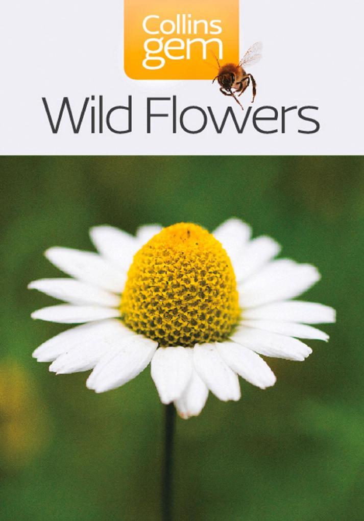 Wild Flowers (Collins Gem).pdf